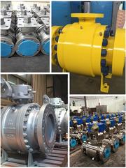 Manufacturer of Industrial valves